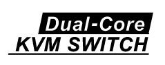 Dual-core KVM switch