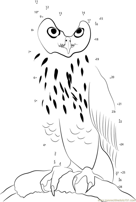 Eagle Owl Dot To Dot Printable Worksheet