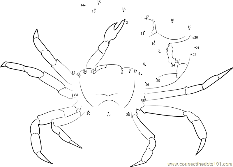 blue crab coloring page newhairstylesformen2014 com