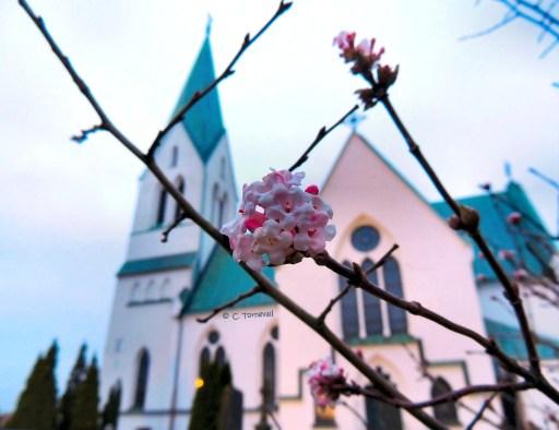 02 Fototriss kyrka