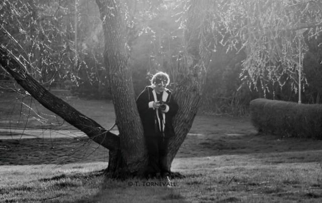 06 Kamera Connie träd Tomas bild
