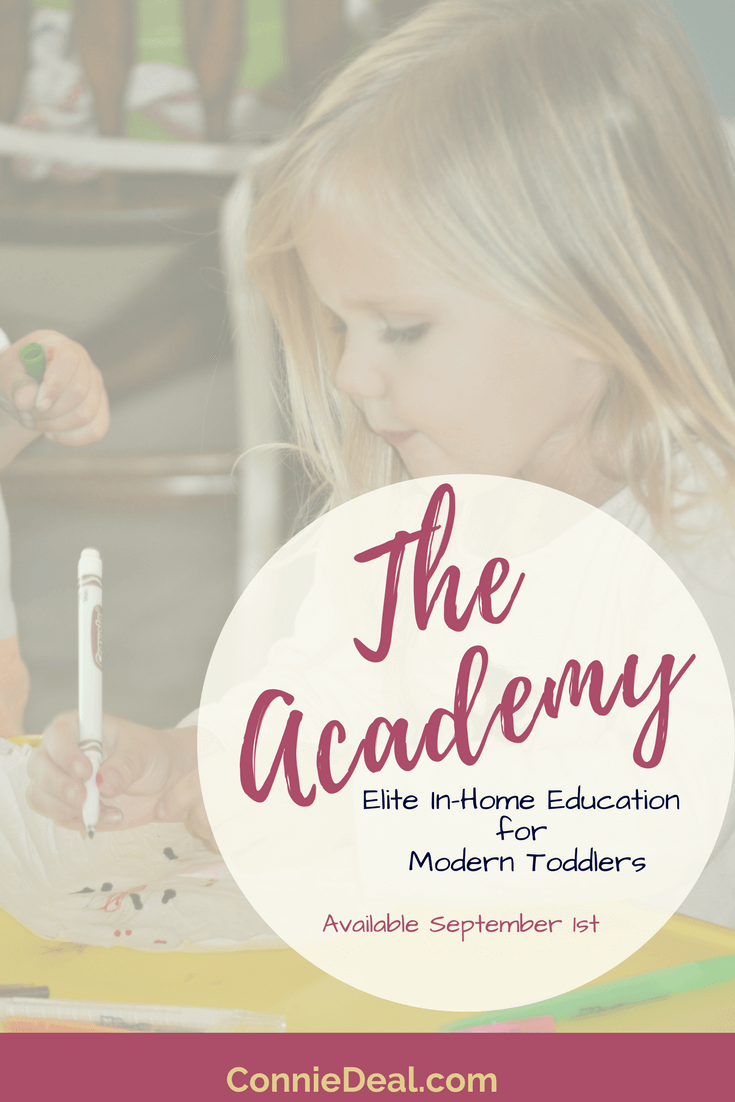 Wondering what to teach your toddler or how to spend your days? Curious about learning through play or child-led learning? Check out The Academy from Lessons and Learning for Littles! It's a premier in home toddler education program designed for busy moms and great for siblings and homeschool preschools or tot school. Click through for a FREE preview!