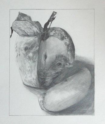 2015-05-05 Still Life (Fictional) - 'Hatching Moon Apple' (Graphite)