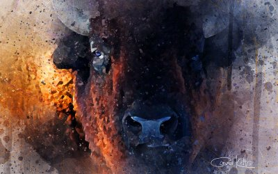King Of The Prairies