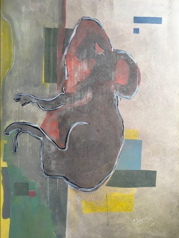 koala-e1534421493999.jpg