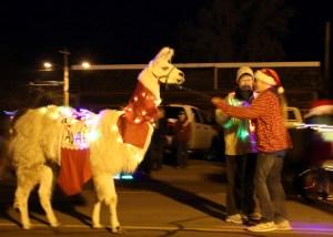 Llama with lights