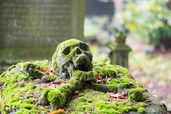 cross-bones-skull-centrale-begraafplaats-brugge