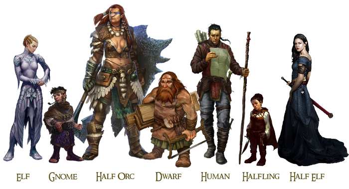 Image result for races of d&d