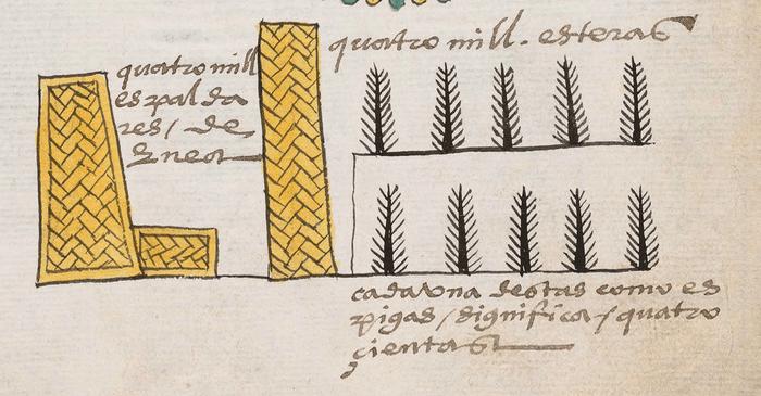 equipal - codice mendoza