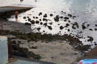 Zona de marisqueo de la Puntilla, se observa la acumulación de arena.