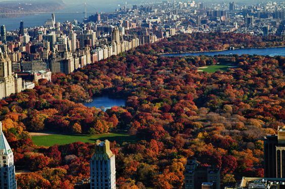 10 Hermosas fotos de Central Park en Otoño