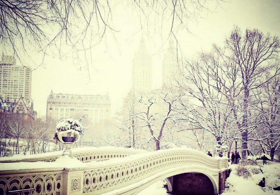 20 Fotos impresionantes de Nueva York en Invierno