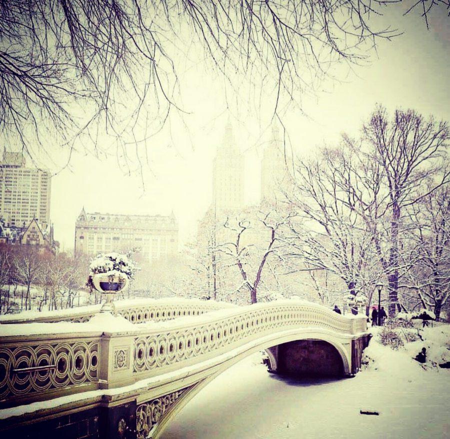 Bow Bridge Central Park Foto: @nydrayton