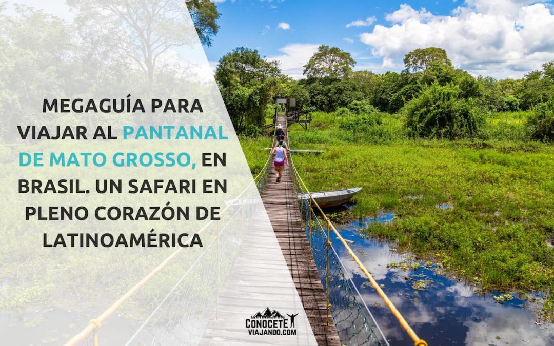 Viajar al pantanal de Brasil, una aventura en el corazón de Latinoamérica