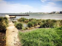 View back over Montevideo