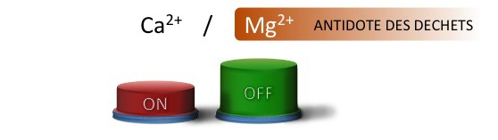 Magnesium_Bouton ON-OFF