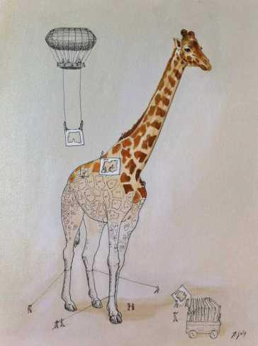 giraffe-copy-solis