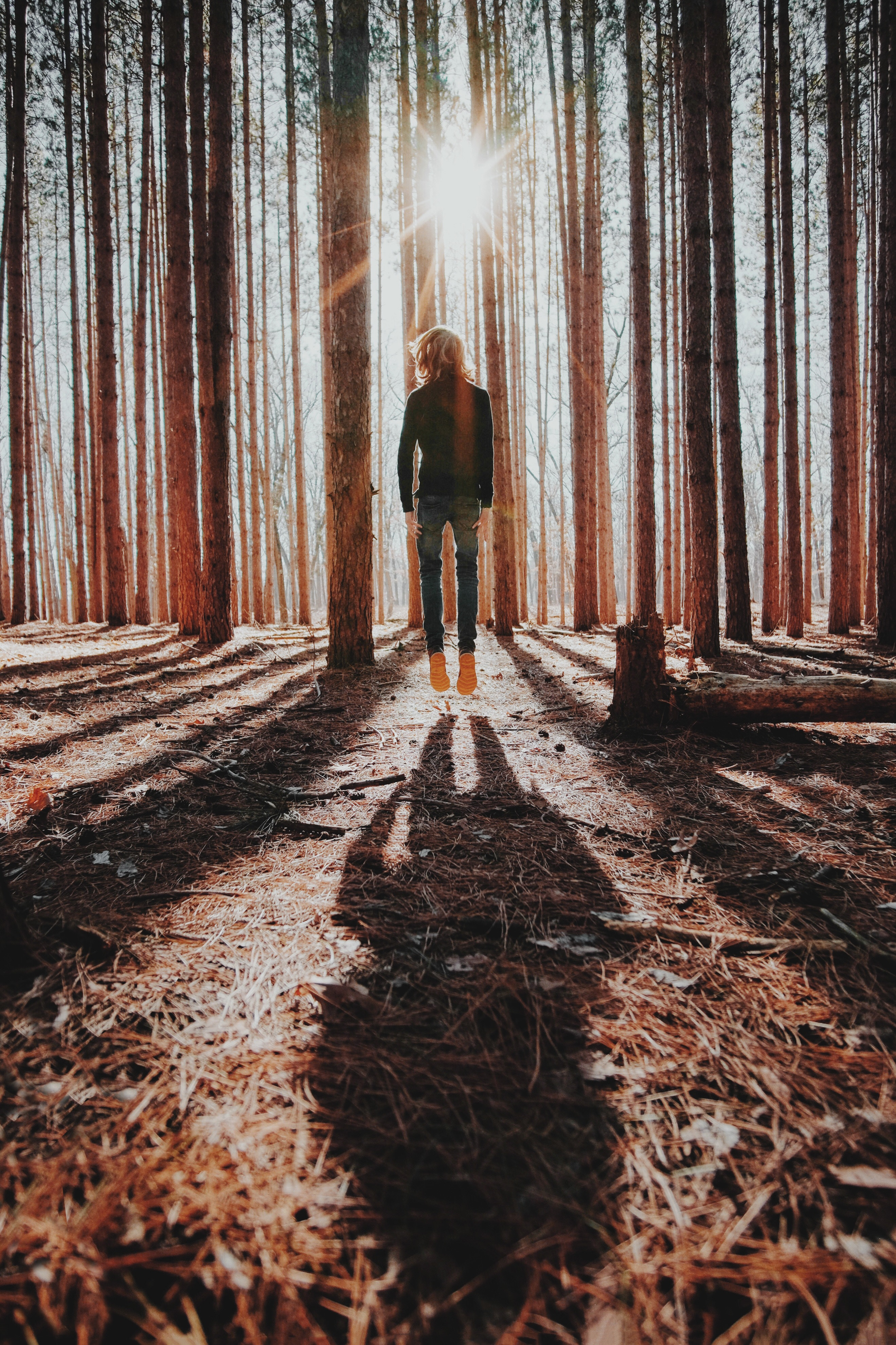 Woman floating in sunlight in forest   freedom