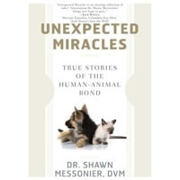 unexpected-miracles-book-cover