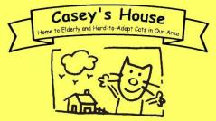 Casey's House cat rescue TNR