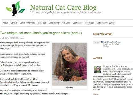 natural cat care consulting nutrition health