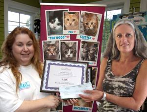 2011 Petties winner Kitten Associates