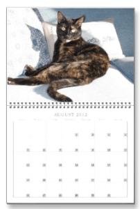 calendar Allegra