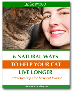 6 natural ways to help your cat live longer