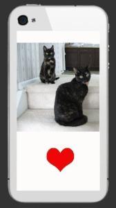 cats-iphone-sticker