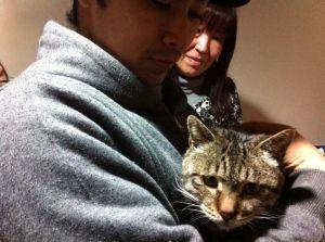 Japan Cat Network rescued cats Fukushima