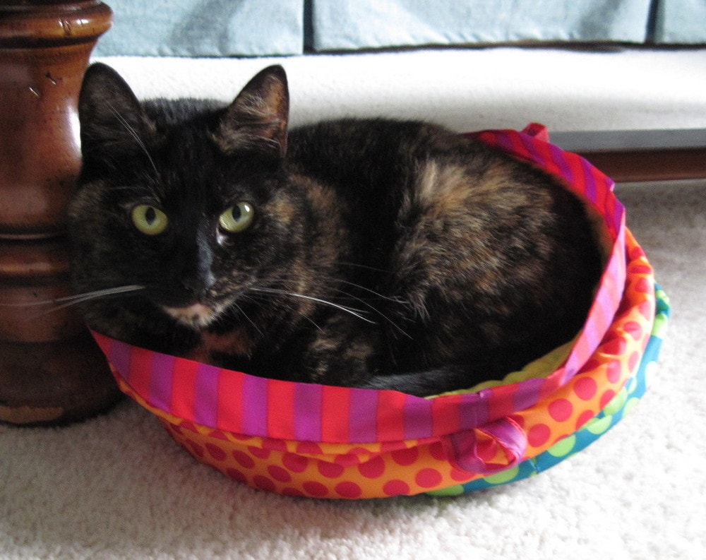 Tortoiseshell Cat In Pink Bed