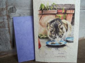 cat_greeting_card