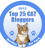 top_25_cat_blog