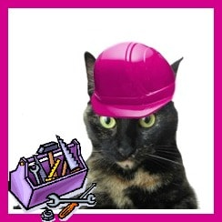 cats_remodeling_home_improvement_safety