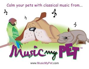 relaxing music for pets
