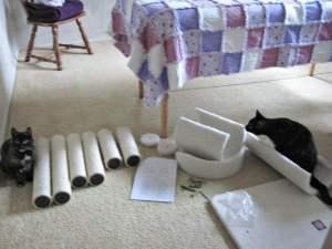 cat tree assembly