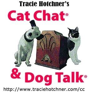 Cat_Chat_Dog_Talk_Radio