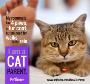 I_am_a_cat_parent