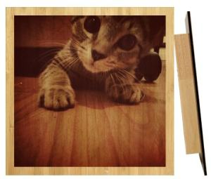 wood_cat_print