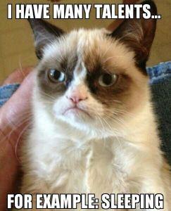 Grumpy_Cat_lands_movie_deal