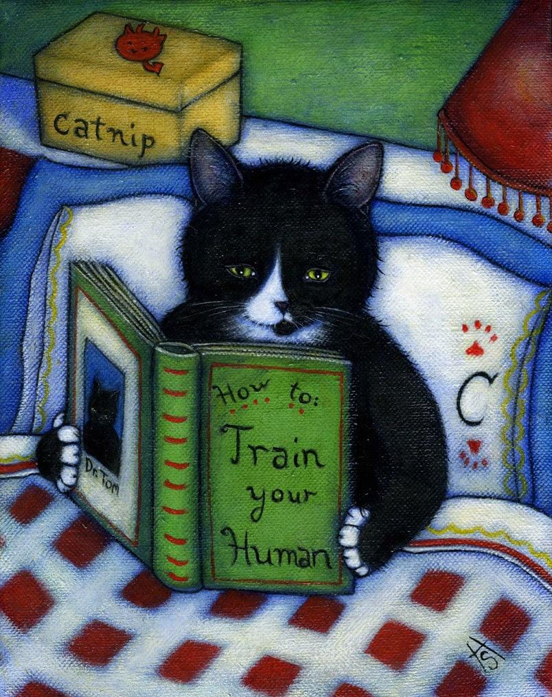 domestic feline behaviour