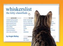 Whiskerslist_Angie_Bailey