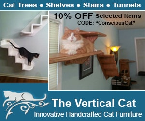 The_Vertical_Cat