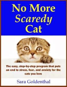 Scaredy_Cat