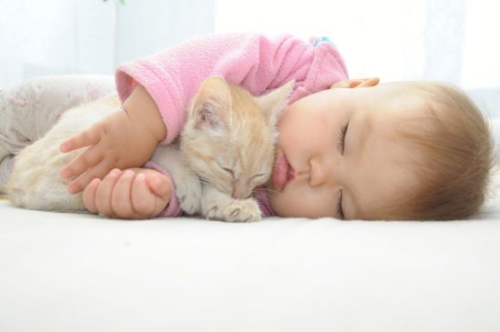 Cats and Babies: Friends for Life - The Conscious Cat