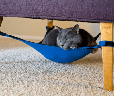 cat_crib_cat_hammock