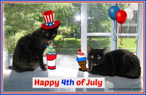Happy 4th Of July 2014 >> Happy 4th Of July 2014 The Conscious Cat