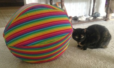 The_Cat_Ball