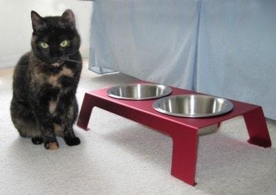 elevated_cat_feeder