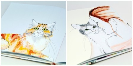 cat__illustrations